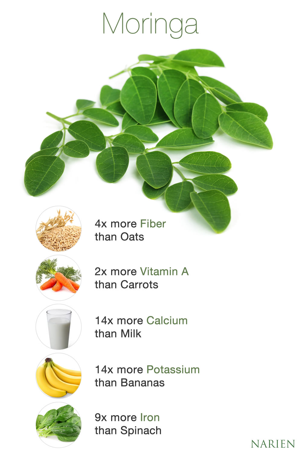 Where to get moringa