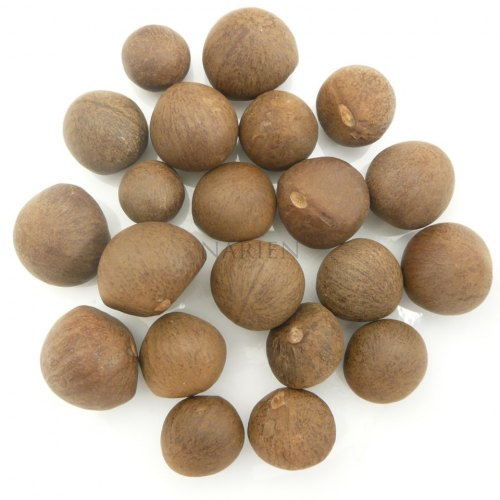 Tea Seeds Image