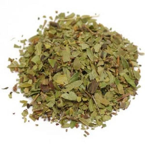 Uva Ursi Leaf Tea - Arctostaphylos Uva Ursi - Narien